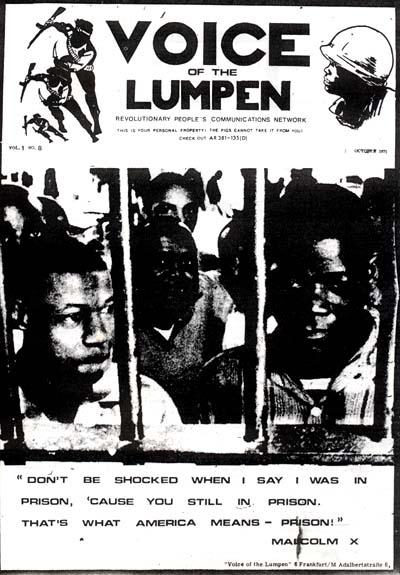 Bild 3: Repro eines Covers von Voice of the Lumpen