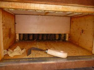 Kiste 1: Abgeschnittene übergebaute Waben und der dafür ideal gebogenene Spachtel